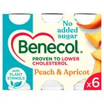 Benecol Peach & Apricot Smooth Yogurt Drinks